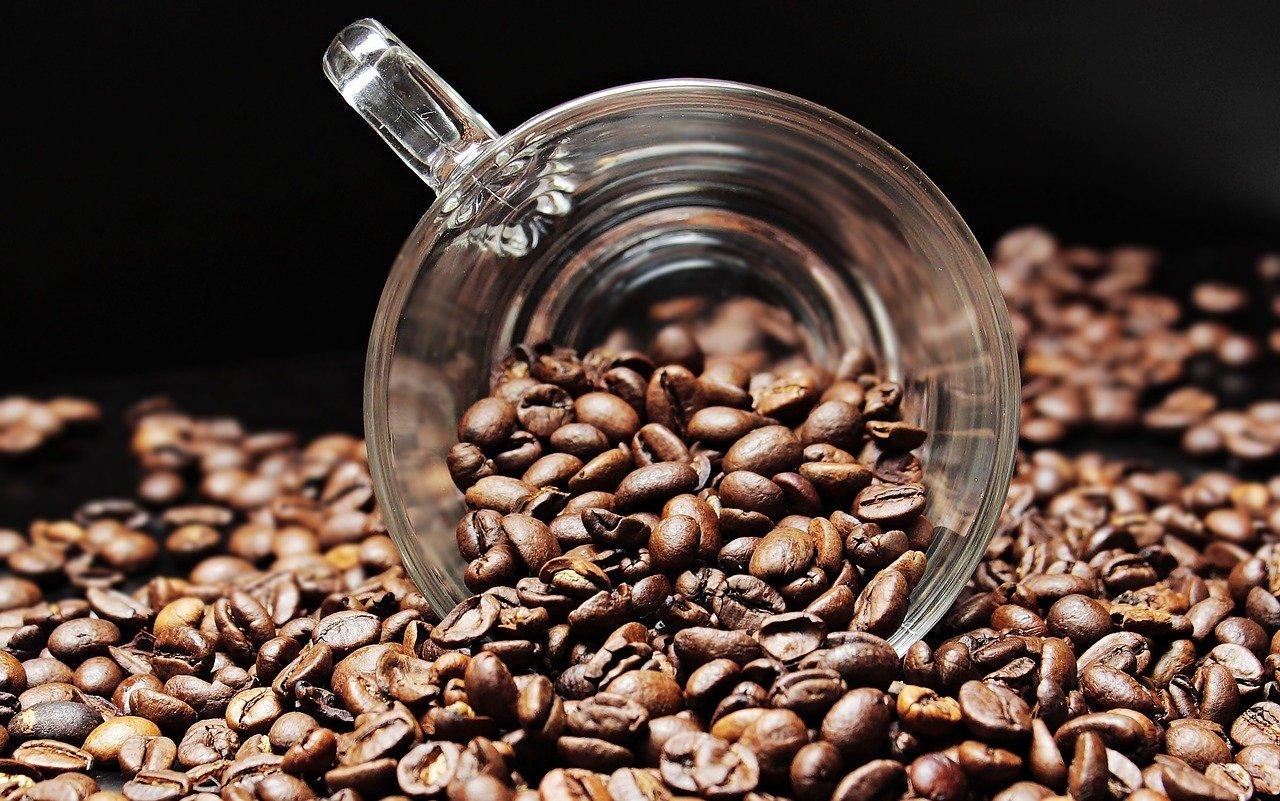 Szlachetne kawy prosto z palarni